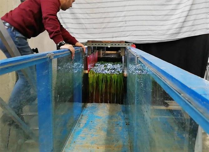 Prova in canale di paramento arginale protetto con manto erboso